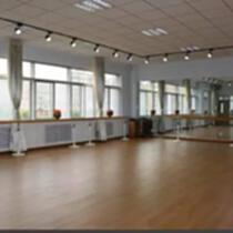 舞臺PVC地板 舞臺塑膠地板 舞臺地板源頭工廠