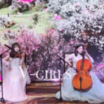 深圳小提琴表演 四重奏 深圳小提琴演出 演出服務